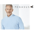 pegasusmenswear.co.uk