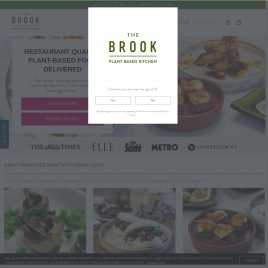 the-brook.co.uk preview