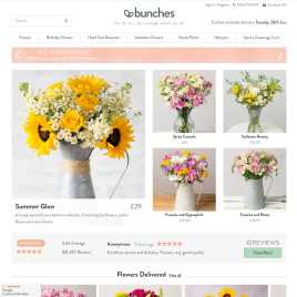 bunches.co.uk preview