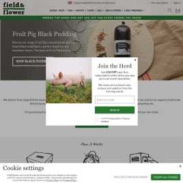 fieldandflower.co.uk preview